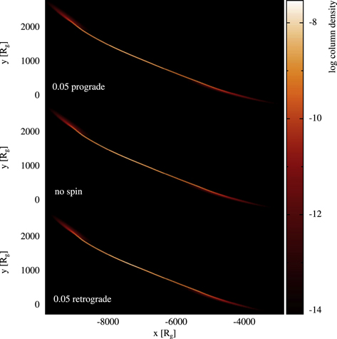 Tidal Disruption Events: The Role of Stellar Spin - IOPscience