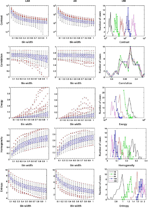 Impact of intensity discretization on textural indices of [18F]FDG