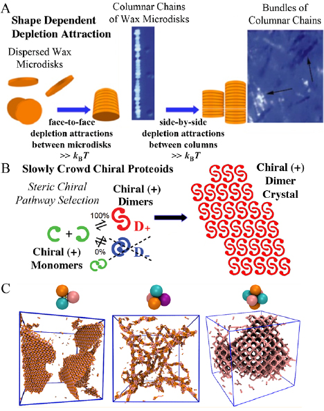 Assembly of colloidal particles in solution - IOPscience
