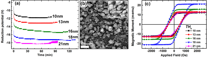 Electrochemical pore filling strategy for controlled growth