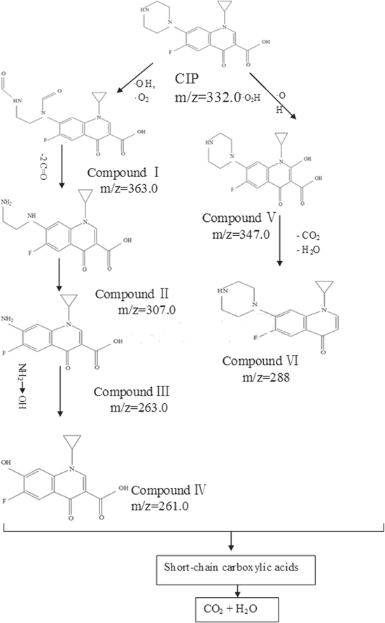 Degradation And Mineralization Of Ciprofloxacin By Gasliquid