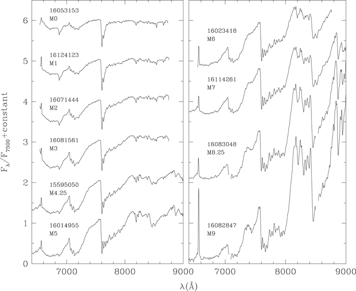 New Young Stars And Brown Dwarfs In The Upper Scorpius Association